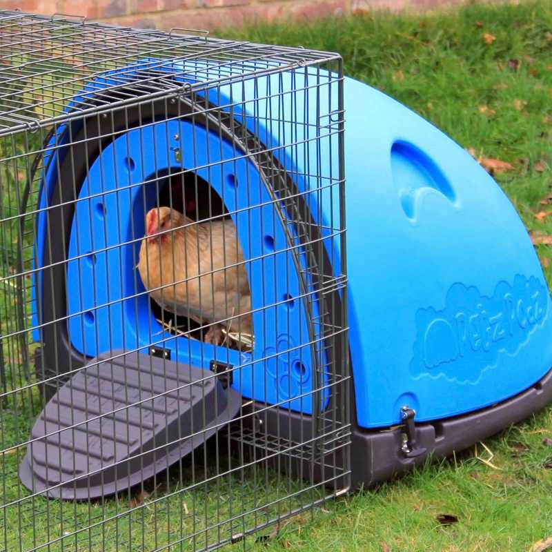 Petpodz chicken housing with run extension easy to clean for Duck houses and runs